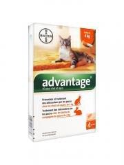 Advantage 40 Fuer Katzen Einzeldosispipetten X4