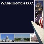 Scrapbook Customs Washington DC 12'' x 12'' Scrapbook Paper - 1 Sheet (14320) by Scrapbook Customs (Image #1)
