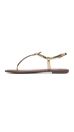 Women's Sam Edelman Boa Gold Sandals Gigi 55pwr6x