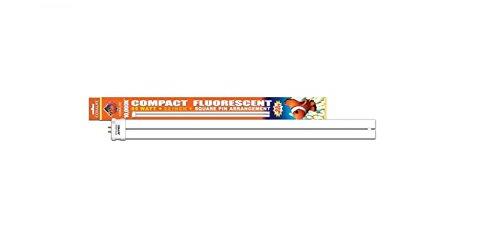 Fish & Aquatic Supplies 65Watt Compact 10000K Flo Super Daylight Square Pin Bulb 22