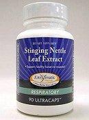 Inc de thérapie enzymatique Stinging Nettle Leaf Extract 90C