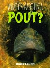 What on Earth Is a Pout?, Edward R. Ricciuti, 1567111033