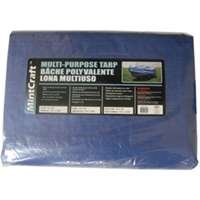 Mintcraft BL1020 10'' X 20'' Medium Duty Tarp by Mintcraft