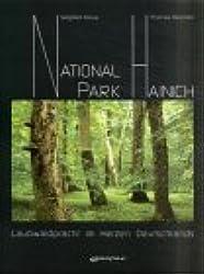Nationalpark Hainich: Laubwaldpracht im Herzen Deutschlands