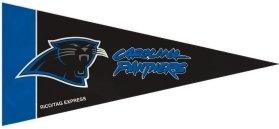 Carolina Panthers Mini Pennants - 8 Piece Set]()