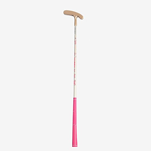 Junior Golf Putter Clubs Double Side Clubs for Kids (gold head with pink shaft, 3-5 years old girls) (Gold Junior 5 Club)