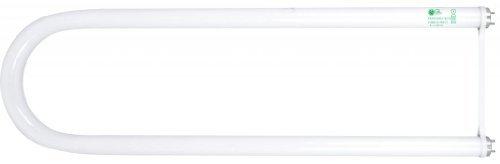 Goodlite G-FB32T8/865 T8 U- Bend 32-watt 6-Inch Wide  Fluorescent Tube Light Bulb, Daylight