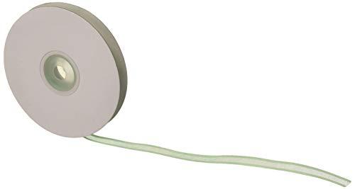 Mint Organza Satin Edge Ribbon - Homeford FCR000SES0308530 Satin-Edge Sheer Organza Ribbon, 3/8