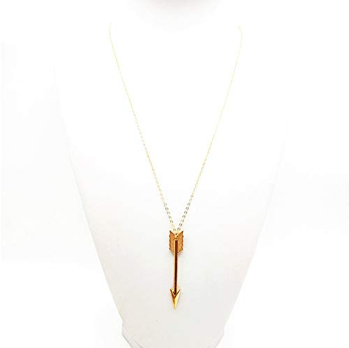 BeeSpring Simple Necklaces Plated Long Chain Pendant Necklaces - Golden Color