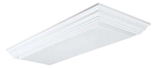 LITHONIA 4 Bulb T8 Fluorescent Ceiling Light Fixture
