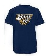 Minor League Burlington Bees T-Shirt Style Jersey (Adult X-Large)