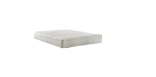 Signature Sleep Contour 8 Inch Independently Encased Coil Mattress with CertiPUR-US certified foam, Queen