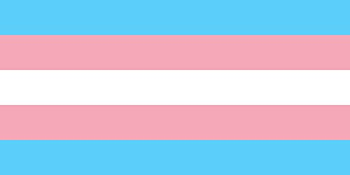 SoCal Flags Transgender Flag from 3x5 Foot Polyester LGBT Pr