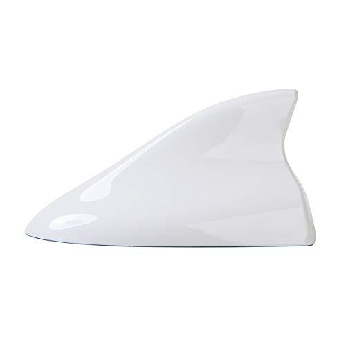 white shark antenna - 7