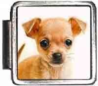 Chihuahua Dog Italian Charm Bracelet Jewelry Link A10003 ()