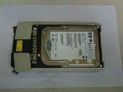 HP 411089-B22(1599) HPQ 300GB 15K SCSI HD (411089B22(1599))