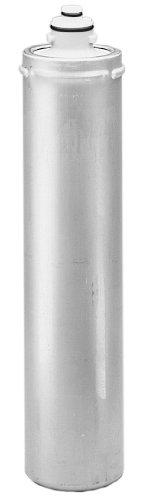 (Everpure EV9608-00 4JT Flushing/Sanitizing Cartridge)
