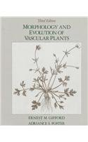 Morphology and Evolution of Vascular Plants (Series of Books in Biology)