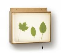 Wall Mount Light Box by Whitney Brothers