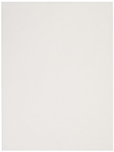 (Sax Sulphite Drawing Paper, 70 lb, 9 x 12 Inches, Extra-White, Pack of 500 - 206309)
