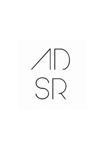 Download ADSR Book 1 ebook