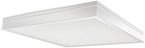 promo code a279f 64cc8 RAB Lighting PANEL2X2-41YN/D10/E2 Lighting Panel 2X2 LED 41W ...