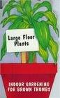 Large Floor Plants, Gary M. Spahl, 1558671838