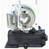 交換用ランプ 筐体付き ACER EC.J8700.001 Osram P-VIP電球内蔵   B01LBW8NWC