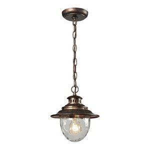 Elk 45031/1 Searsport 1-Light Outdoor Pendant with Water Glass Diffuser, 8 by 10-Inch, Regal Bronze - 8 Light Pendant Outdoor
