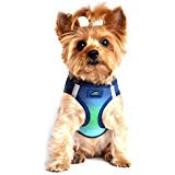 ULTRA CHOKE FREE STEP IN REFLECTIVE DOG HARNESS ★ AMERICAN RIVER OMBRE NORTHERN LIGHTS ★ ALL SIZES (Small) ()