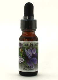 (Flavor Extract Natural Violet Culinary Use By Medicine Flower)