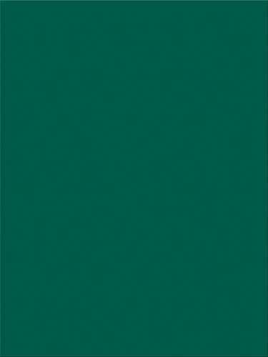 "Pacon SunWorks Construction Paper, 9"" x 12"", 100-Count, Dark Green (7804)"