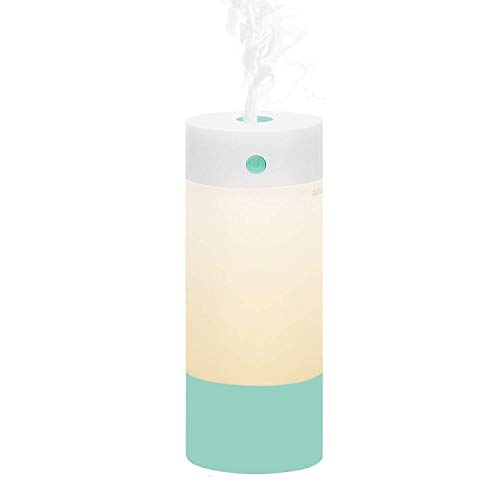 Sbogie Ultrasonic Cool Mist Humidifier, 250 mL USB Personal Portable Humidifiers with Night Light Mode, and Whisper Quiet for Babies Single Room, Car Office Home Travel (Random Color Delivery)