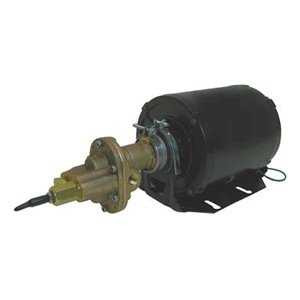 Dayton 4KHP4 Rotary Gear Pump, Bronze, 1/3 HP