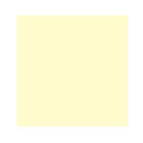 4x4//100x100mm Cokin Z-Pro Series Yellow Color Correction Filter CC10Y