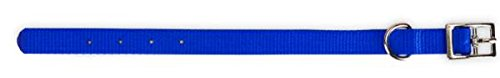 Petmate 20428 Nylon Dog Collar, 22 by 1-Inch