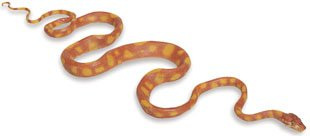 Safari 257629 Amazon Tree Boa Animal Figure- Pack of 2