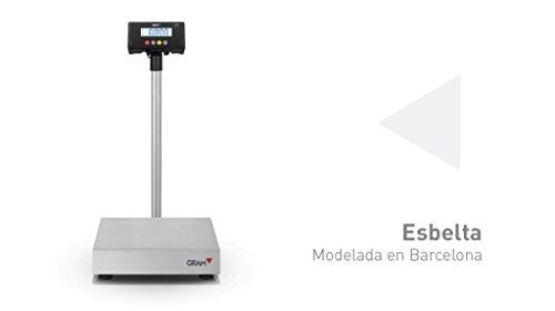 Balanzas industriales Gram Precision modelo ZMissil F2-60 (60Kg/10g) dimensiones del plato 500x400mm modelo 2017: Amazon.es: Industria, empresas y ciencia