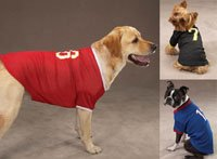 (Zack & Zoey Football Jersey for Dogs Small Blue)