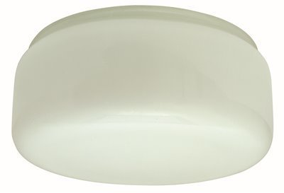 Glass Lamp Shade Replacement 10 Inch ★ Best Value ★ Top