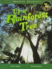Up a Rainforest Tree, Carole Telford and Rod Theodorou, 1575721562