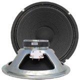 Seismic Audio Bedrock-12GPair 70W PA/DJ Raw Replacement Woofer or Speaker, 12-Inch