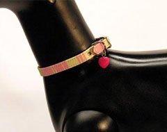 City Stripe Avocado and Fuchsia Dog Collar with Heart Charm (XSmall)