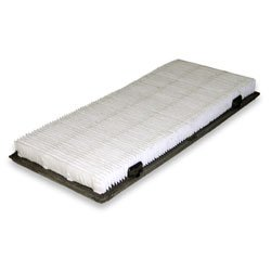 Hoover Company #40110008 Wide Path Allerg Filter ()