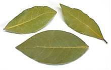 Bay Leaves 3 Pounds Bulk by Spicy World (Image #1)