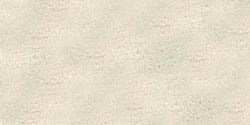 Ranger EAJ-21902 Embossing Antiquities Powder, 1-Ounce, Weathered White from Ranger