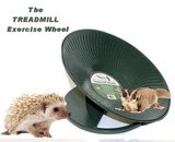 CHINCHILLA, HEDGEHOG, PRAIRIE DOG HEAVY METAL TREADMILL EXERCISE WHEEL 14'' DIAMETER GREEN