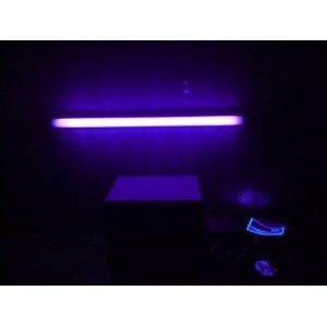 Lights of America 7020BL 24-Inch Undercabinet black Light