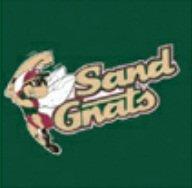 Minor League Baseball Savannah Sand Gnats T-Shirt Style Jersey (Adult - Savannah Outlets