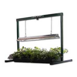 Bonsai Tree Grow Light System | 48 Inch from BonsaiOutlet by BonsaiOutlet